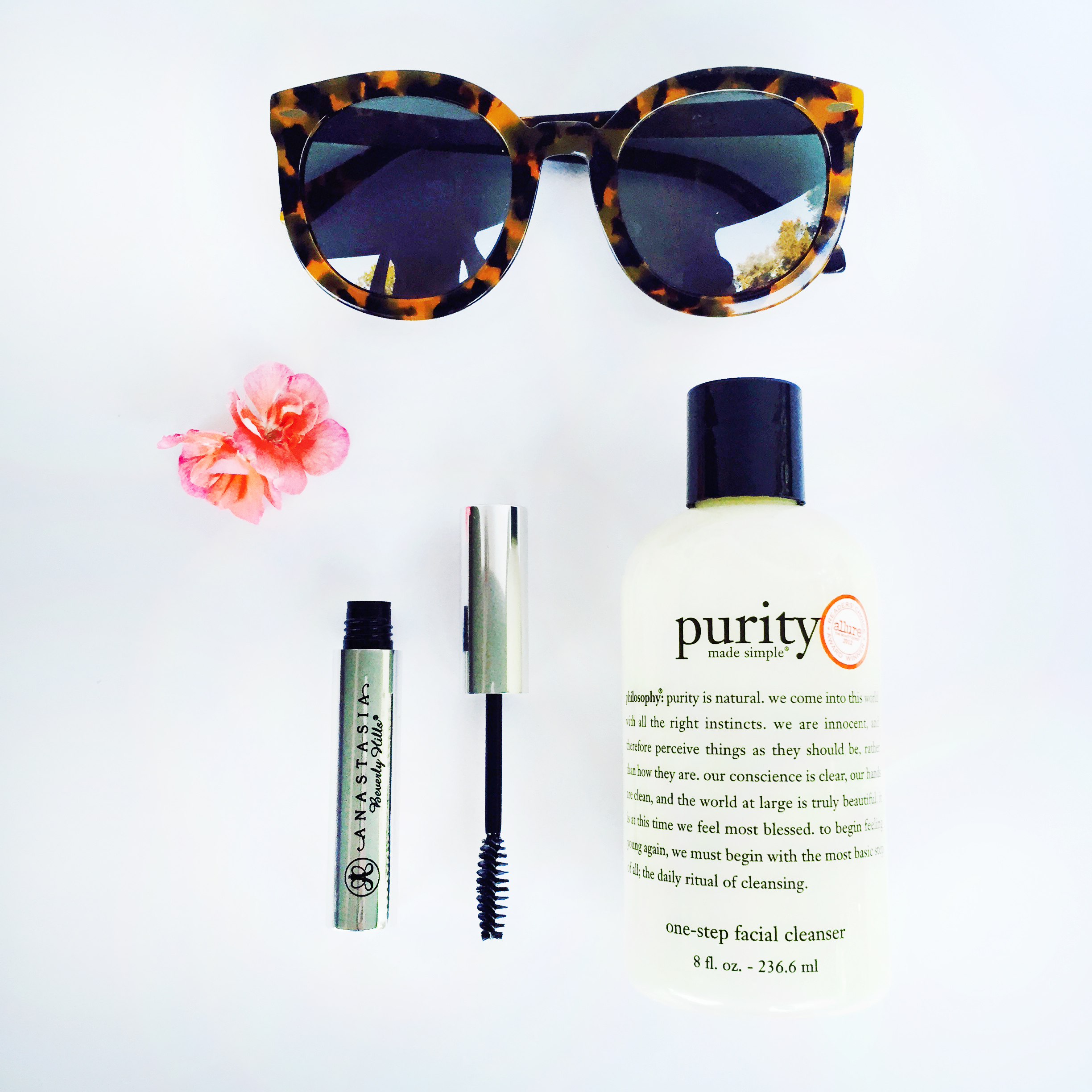 Purity face wash_Anastasia brow gel